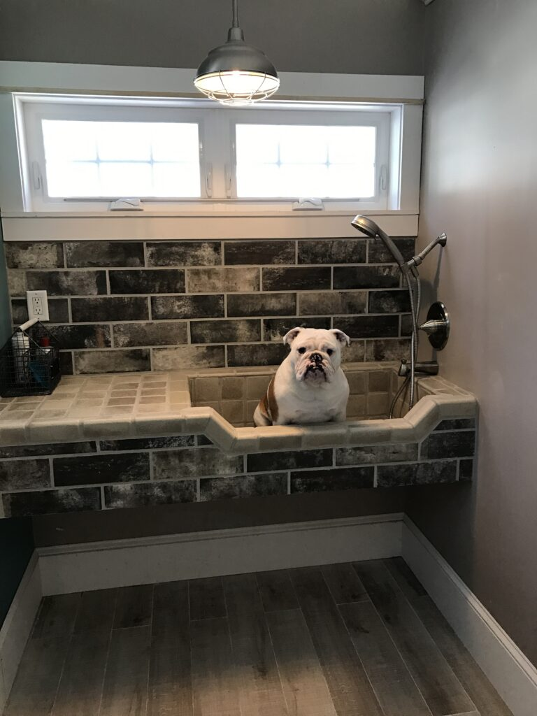 photo of quality control officer winston the dog in dog bath